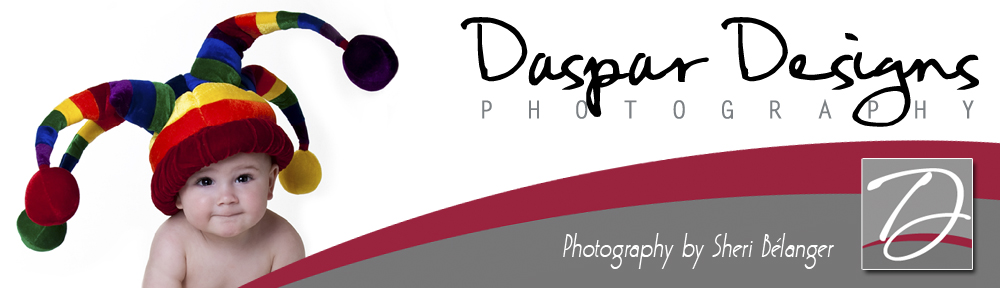 Daspar Designs: Photography by Sheri Belanger